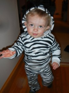 My Zebra after trick or treating